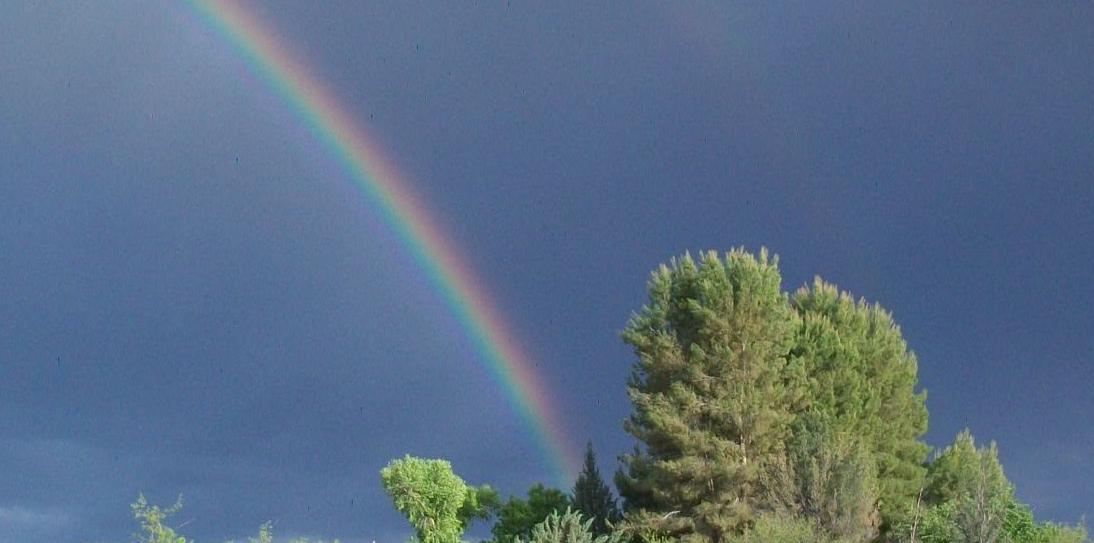 Rainbow Artists